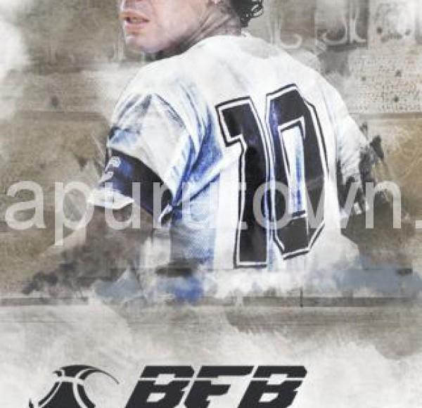 BFBチャンピオンズ08