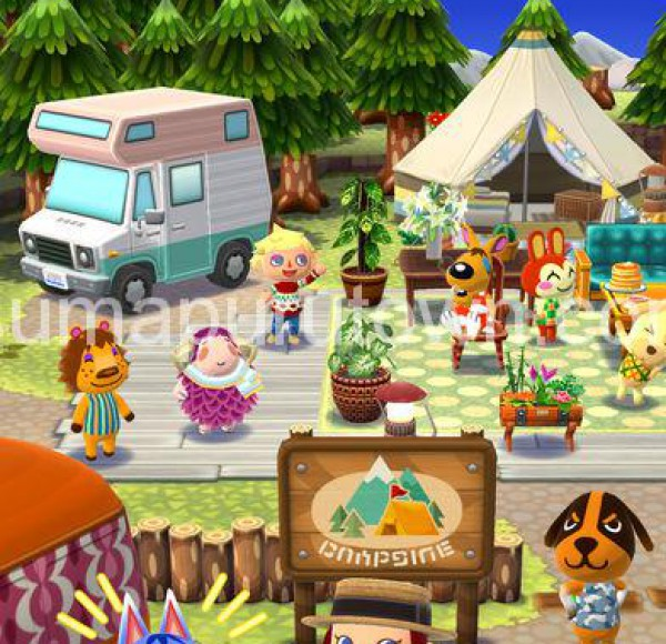 pocketcamp12