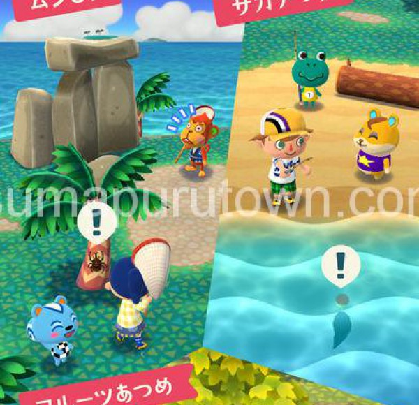 pocketcamp13